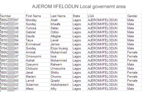 Ajeromi Ifelodun local government area of lagos state