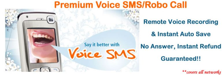 voice sms robot call